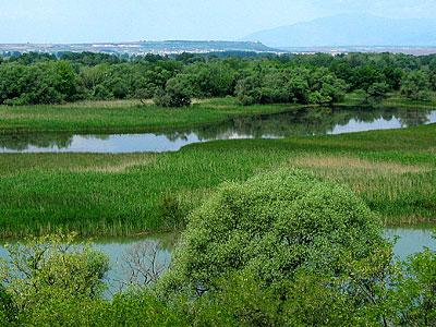 Αξιός ποταμός: νησίδες βόρεια από το φράγμα